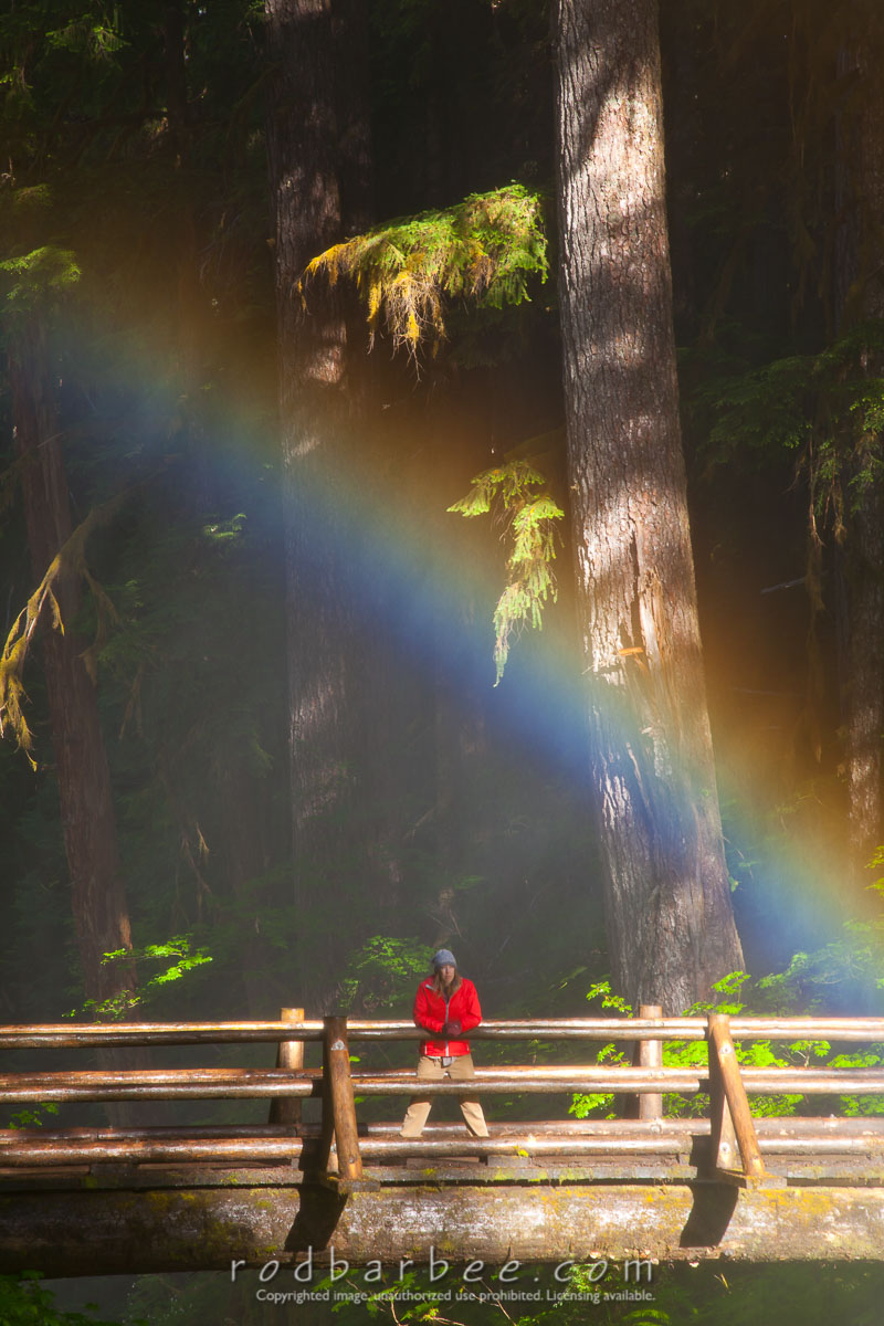 Barbee_100714_5D Mark II_0948 |  Rainbow with person standing on foot bridge over Sol Duc Falls, Olympic National Park.