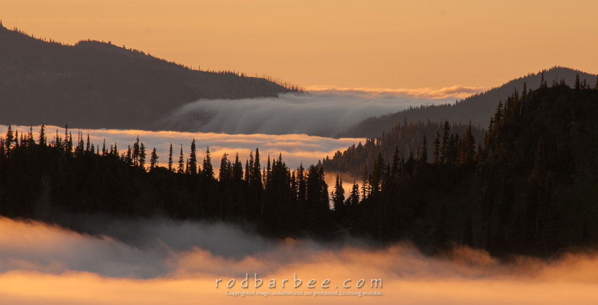 Barbee_140725_3_5946 |  Sunrise and cloud formations from Hurricane Ridge, Olympic National Park, WA