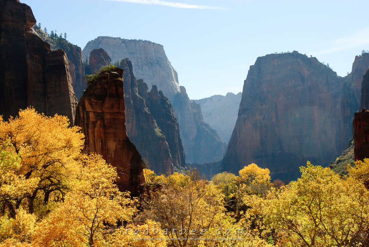 Barbee_071107_2_1693 |  Zion Canyon from the Temple of Sinewava