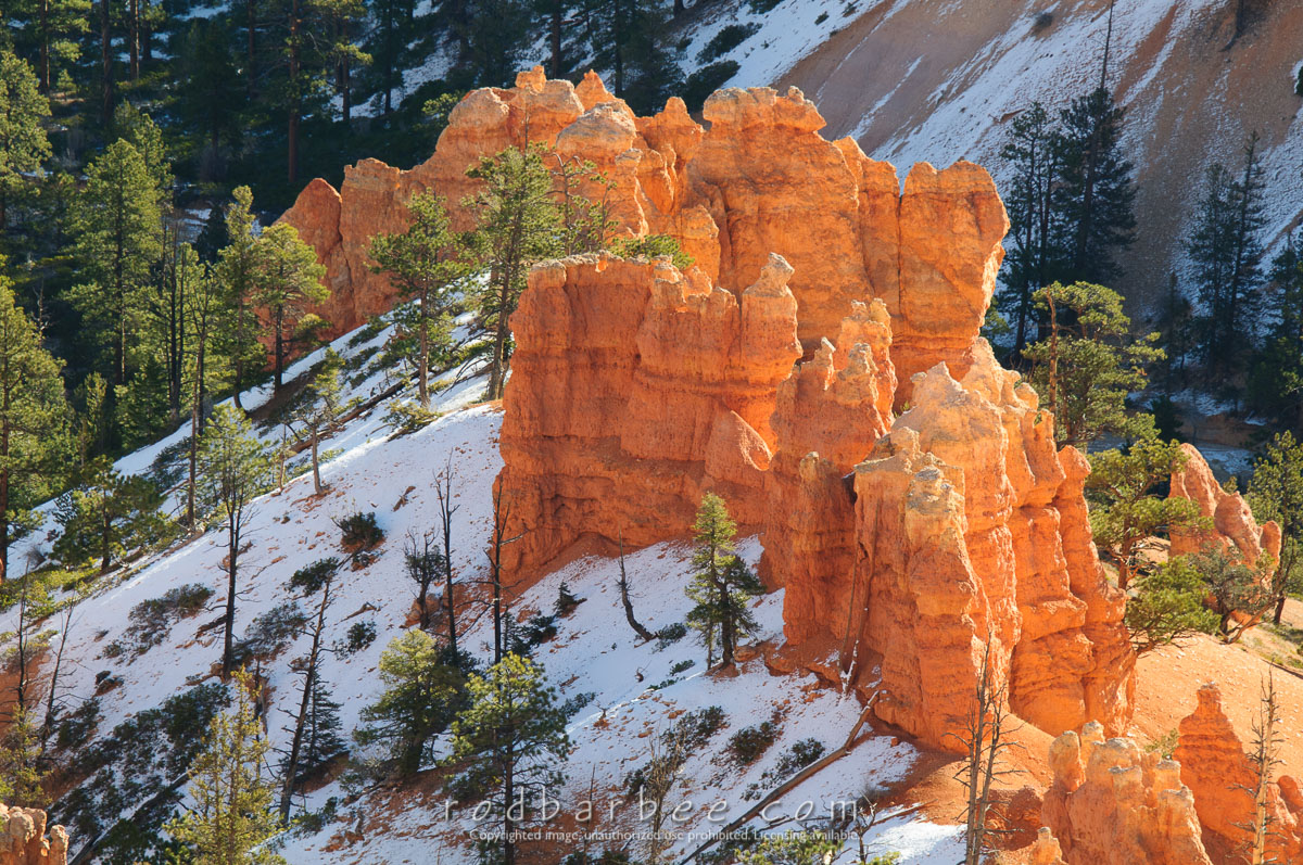 Barbee_131101_3_3615 |  Bryce Canyon National Park