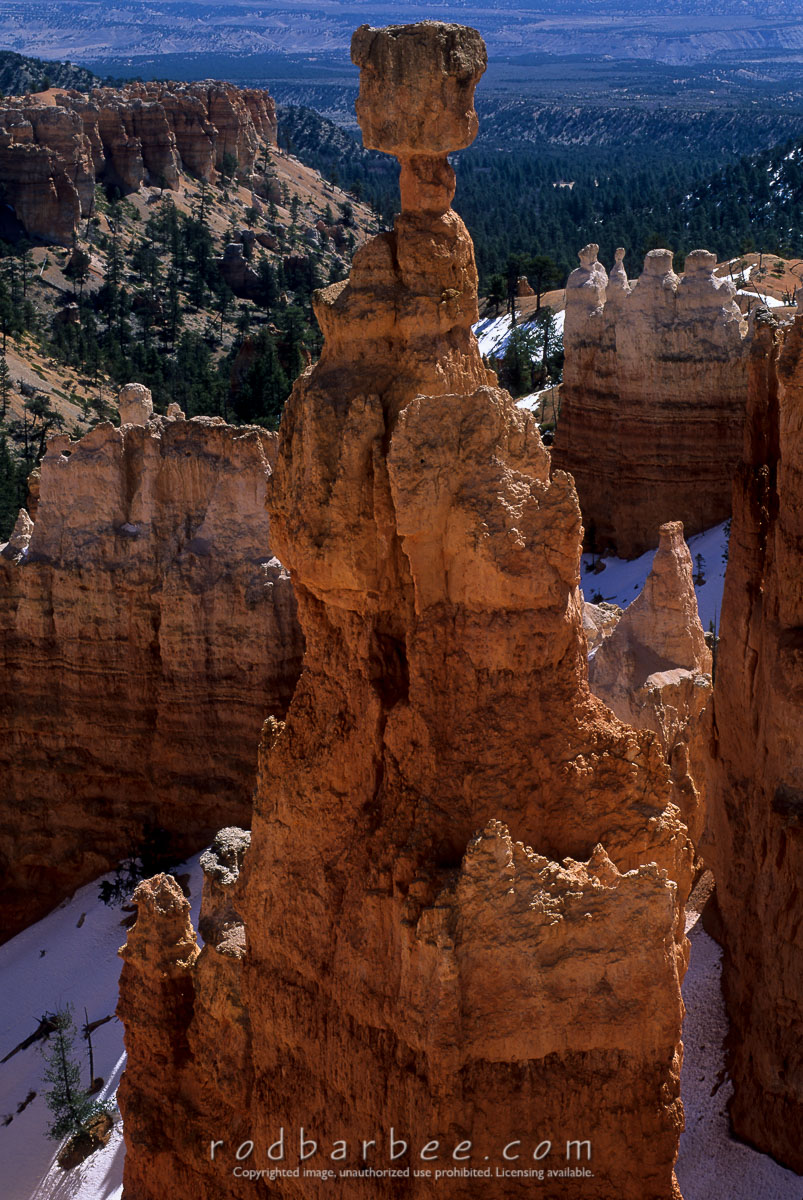 barbee_11420 |  Thor's Hammer, Bryce Canyon National Park, UT