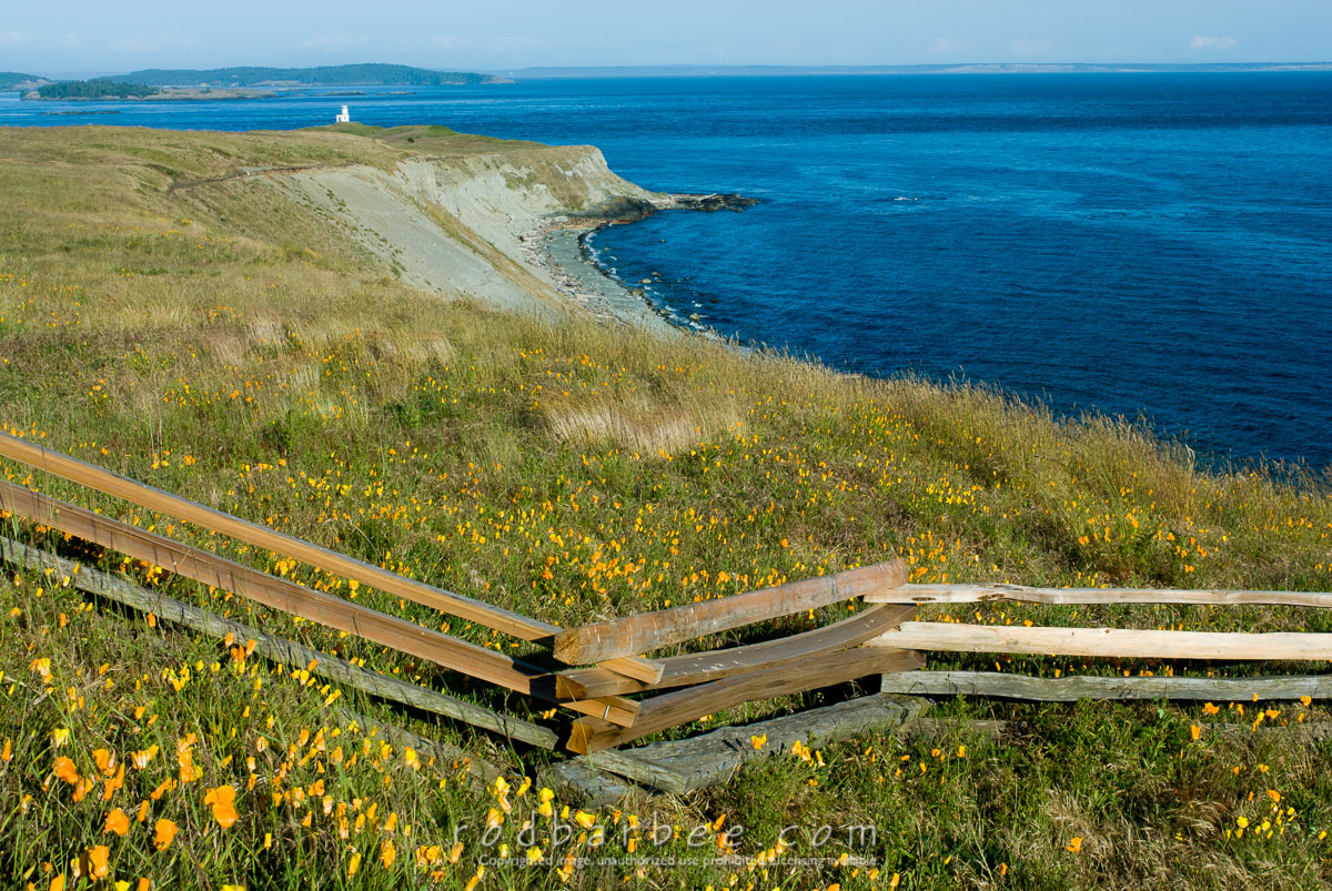 Barbee_060621_2_0667 |  Bluff above South Beach and Cattle Point Lighthouse