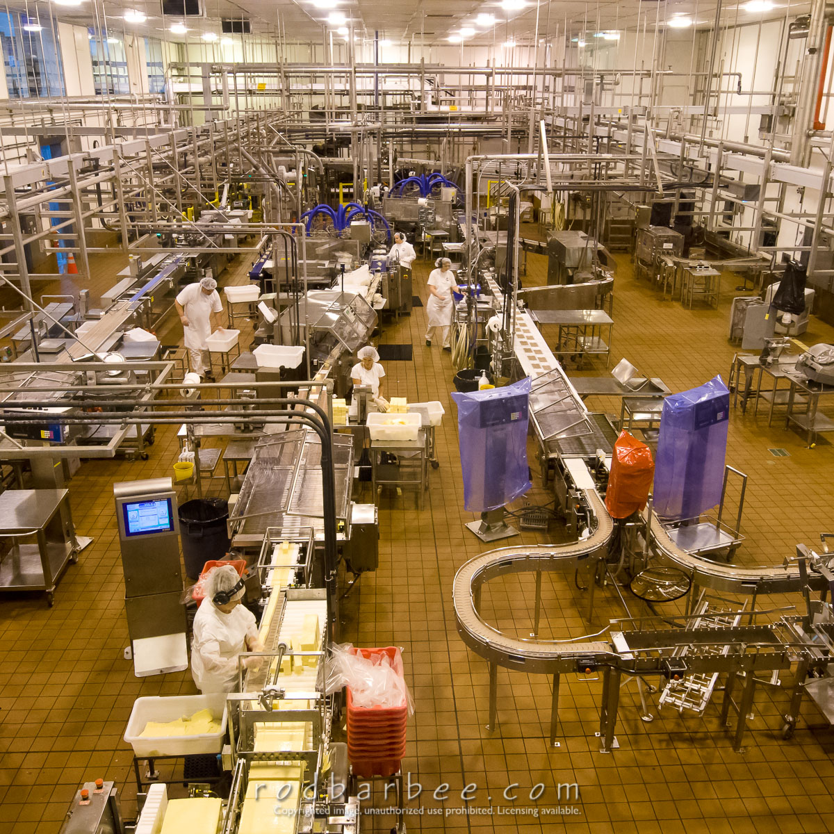 Barbee_110811_3_0203 |  Production line at the Tillamook Cheese Factory