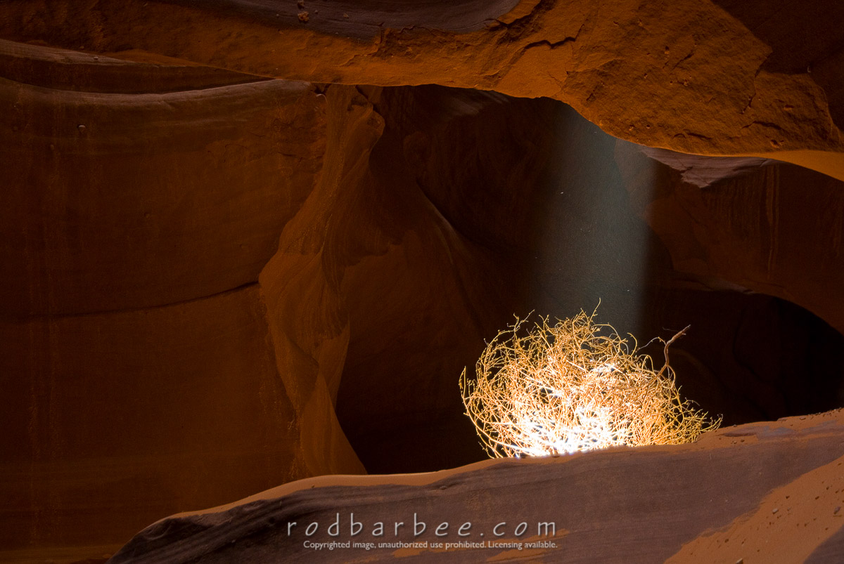 Barbee_0715_2_6231 |  Tumbleweed in light beam, Upper Antelope Canyon